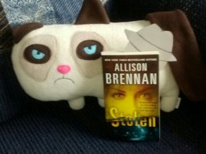 Flat Spooky with best friend Grumpy Cat and Allison Brennan's book, STOLEN.