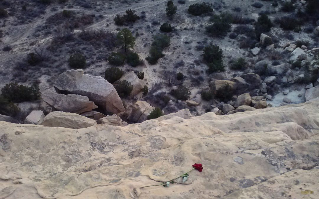 The Cliffside Rose — Flash Fiction Contest