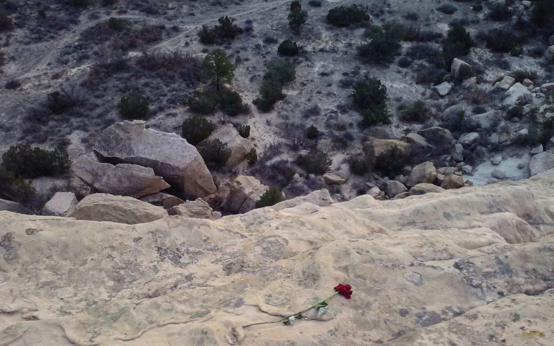 The Cliffside Rose — Flash Fiction Contest