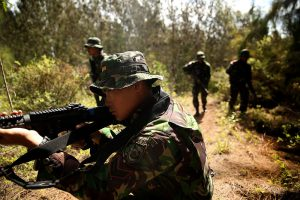 US & Indonesian Troops in Joint Training Exercise Image by USMC, public domain